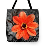 Orange Sunshine Tote Bag