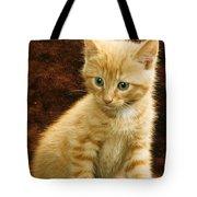 Orange Tabby Mixed Breed Kitten  Tote Bag