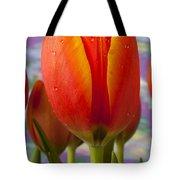 Orange Tulip Close Up Tote Bag
