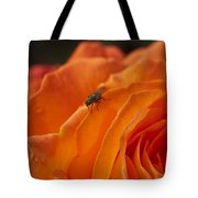 Orange With Visitor Tote Bag