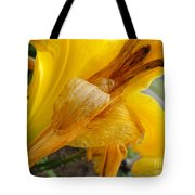 Orange You Smiling Tote Bag