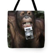 Orangutan With Tourists Camera Tote Bag