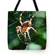 Orb Weaver And Lunch Tote Bag