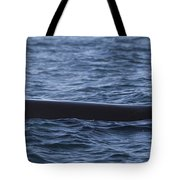 Orca Orcinus Orca Surfacing Showing Tote Bag by Matthias Breiter