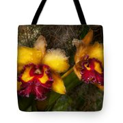 Orchid - Cattleya - Dripping With Passion  Tote Bag