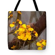 Orchid - Golden Morning  Tote Bag