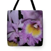 Orchid 234 Tote Bag