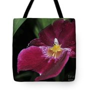 Orchid 252 Tote Bag