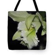 orchid 900 Brassolaeliocattleya Ruben's Verde Chantilly Green Tote Bag
