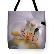 Orchid Close Up Two Tote Bag
