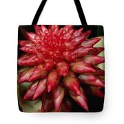 Orchid From The Autana Tepui Tote Bag
