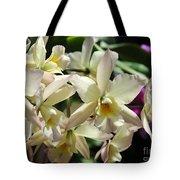 Orchid Iwanagara 9854 Tote Bag