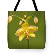 Orchid Number 1 Tote Bag