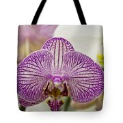Orchid Originality Tote Bag