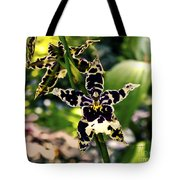 Orchid Study Tote Bag