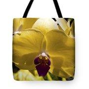 Orchid Study Vi Tote Bag
