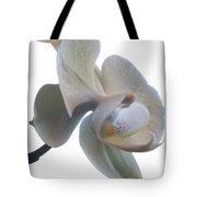 Orchids 1 Tote Bag by Mike McGlothlen