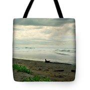 Oregon Coast 17 Tote Bag