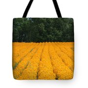Oregon Orange Field Tote Bag