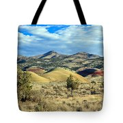 Oregons Painted Hills Tote Bag
