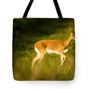 Oribi Two Tote Bag