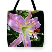 Oriental Lily Named Tom Pouce Tote Bag