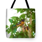 Oriole And Babies Tote Bag