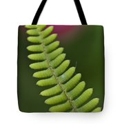 Ornamental Fern Tote Bag