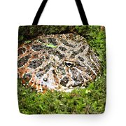 Ornate Horned Frog Tote Bag