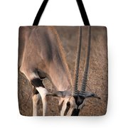 Oryx Oryx Beisa, Samburu National Tote Bag