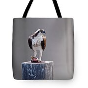 Osprey And Sushi Tote Bag
