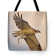 Osprey Catches Big Fish Tote Bag