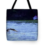 Osprey Cleaning The Lake  Tote Bag