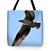 Osprey I Tote Bag