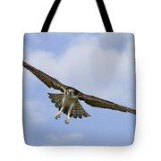 Osprey In Flight Two Tote Bag