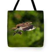 Osprey Inflight At Blue Cypress Lake Tote Bag