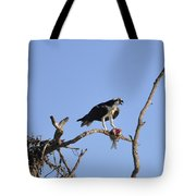 Osprey With Catch I Tote Bag
