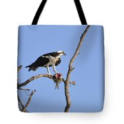Osprey With Catch II Tote Bag