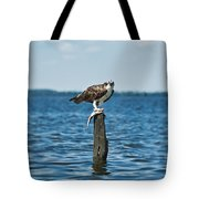 Osprey With Catch. Tote Bag
