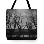 Other Side Of The Wind Tote Bag
