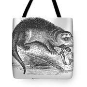 Otter, 1873 Tote Bag