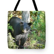 Our Little Shadow II Tote Bag