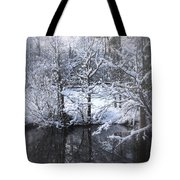Our Pond In The Snow Tote Bag