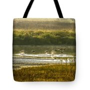 Out Of Here Tote Bag