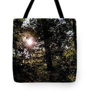 Out Of The Darkness He Calls Tote Bag