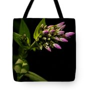 Out Of The Shadows Tote Bag