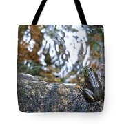 Out Of Water Tote Bag