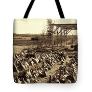 Out Of Your Gourd Tote Bag