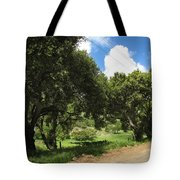 Out On A Country Road Tote Bag