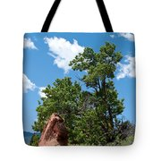 Outcropping Tote Bag